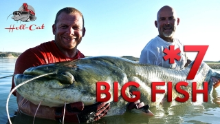 Video 7 - 2016 / Roman Matula / Big Catfish in Spain ( Sumec 233cm vábnička )